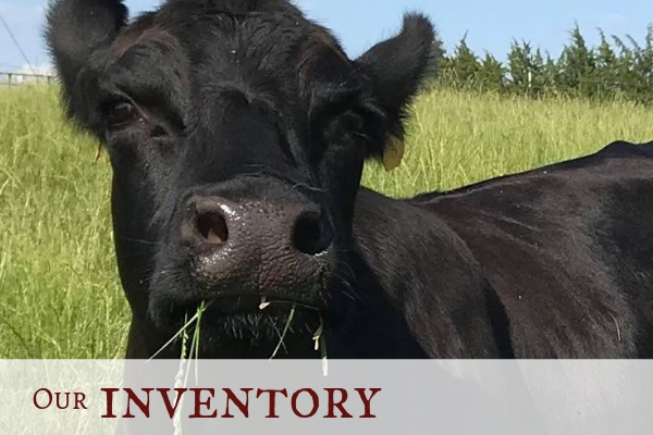 Click here to explore our pork & beef inventory